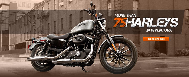 Used Harley Davidson