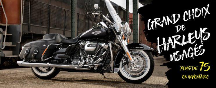 Achat d'une Harley-Davidson à prix de liquidation !