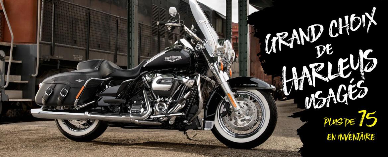 Motos usagées Harley Davidson